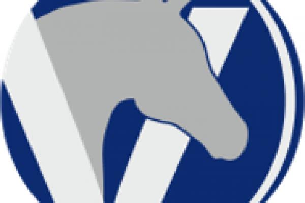 stolk_logo_icon